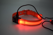 led pet collar(JPF-705)
